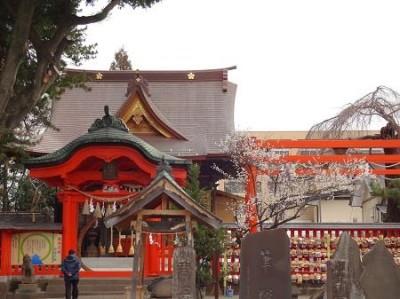 梅の花、仙台榴岡天満宮の画像