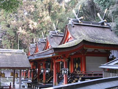 梅の花が見頃を迎える枚方神社のイメージ画像