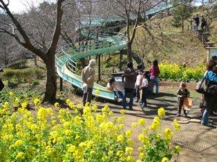 吾妻山公園ローラー滑り台