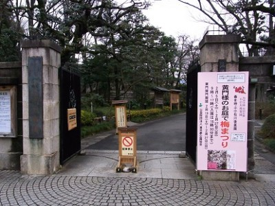 梅の花名所、花見東京、<br>小石川後楽園の画像