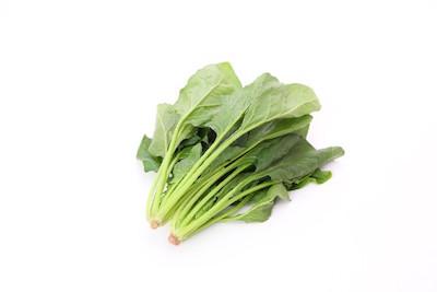 家庭菜園で作りたいおすすめ野菜・ホウレンソウの画像