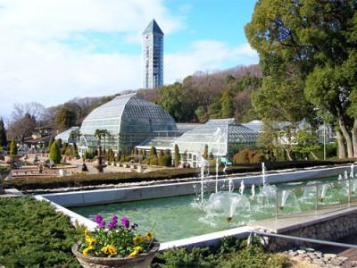 花見をしに名古屋の東山動植物園におでかけの画像02