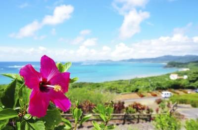 沖縄の子連れで行きたいホテル日航アリビラのイメージ画像01