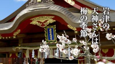 梅の花の名所・岩津天神の画像02