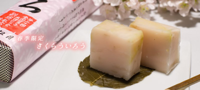 名古屋のバレンタインの春和菓子の画像