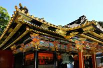 静岡桜えび生しらす旬東照宮の画像