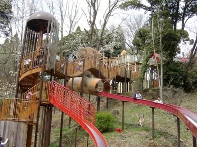 長い滑り台もある昭和の森の画像