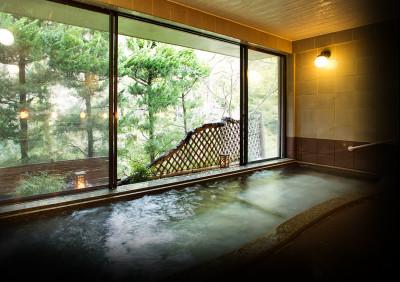 大阪から日帰りできるあまみ温泉のイメージ画像