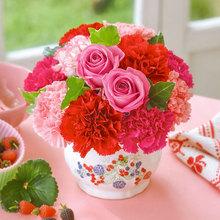 母の日の定番プレゼントを日比谷花壇で買うイメージ画像