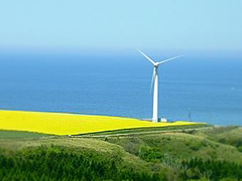 北海道、スケールが大きい、風車の丘の画像