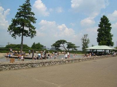 神奈川県公園お弁当ピクニック厚木の画像