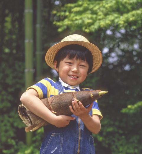 農園、たけのこ狩り、男の子の画像