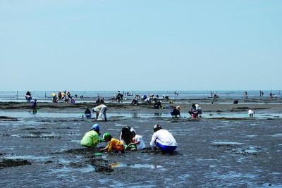 大分の和間海浜公園の潮干狩り画像02