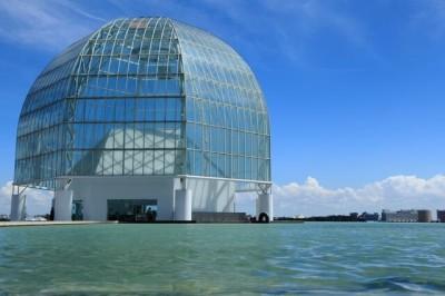 東京の遊び場・葛西臨海水族園の画像01