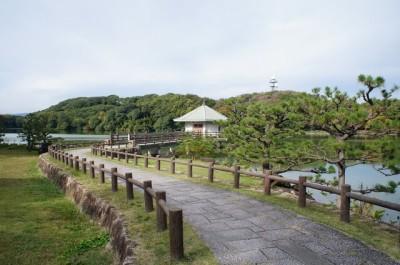 花見もバーベキューも楽しみたい山田池公園の画像
