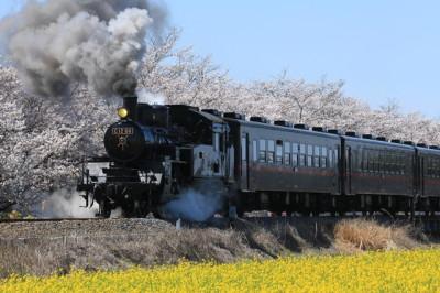 こどもとおでかけ秩父鉄道のイメージ画像