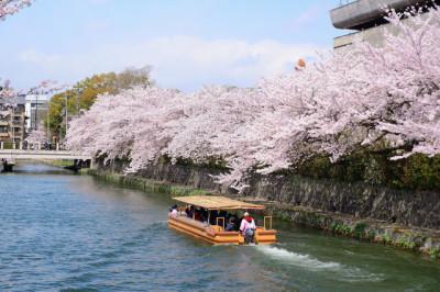 東京の花見クルーズにおすすめしたい船のイメージ画像