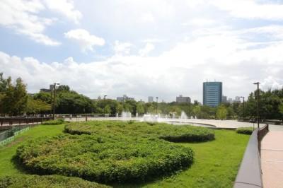 東京江東区にある遊び場の都立木場公園の画像