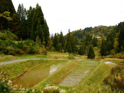 野山北公園のイメージ画像
