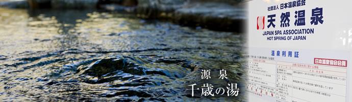 東海日帰り温泉千歳の湯の画像