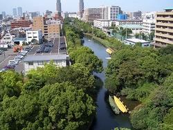 横十間川親水公園の画像