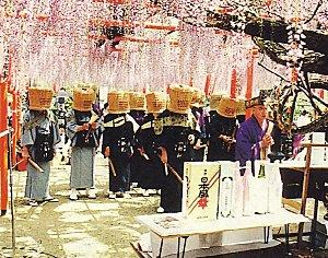 藤の花の名所定禅寺の藤の画像