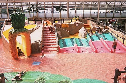 室内プール東京サマーランドの画像