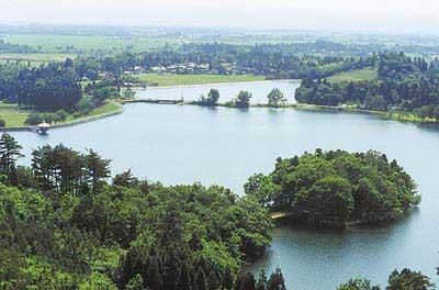 大池いこいの森の画像