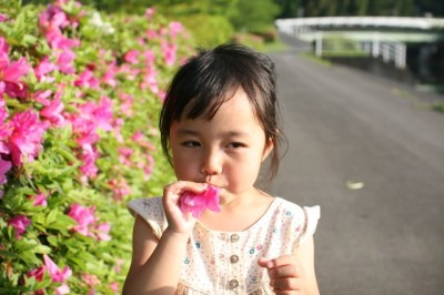つつじの花が見られる東京子連れスポットのイメージ画像