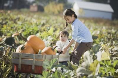 農業する子ども達