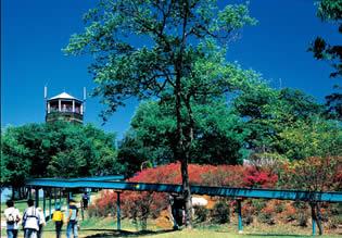 茨城県の公園北山公園の画像