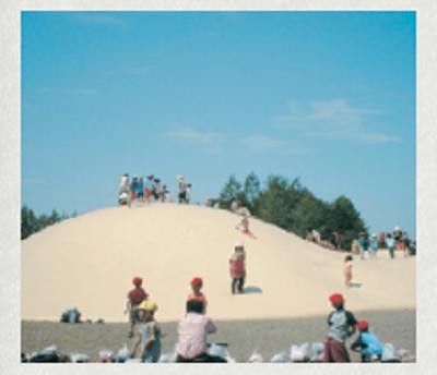 十勝観光おすすめエコロジーパークの画像