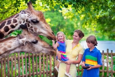 無料の動物園のイメージ画像