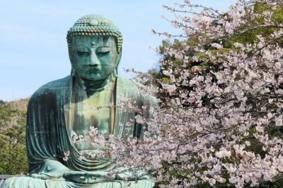鎌倉エリアを子連れでお散歩!のイメージ画像