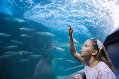 神奈川_水族館のイメージ画像