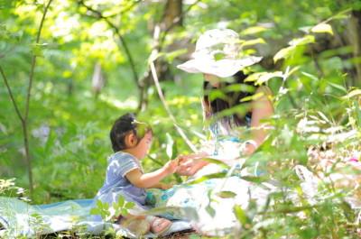 避暑地、軽井沢、木陰の画像