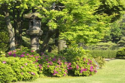 つつじの花が見られる東京清澄庭園のイメージ画像