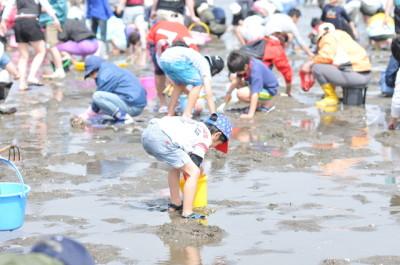 潮干狩り_東京のお台場海浜公園の画像