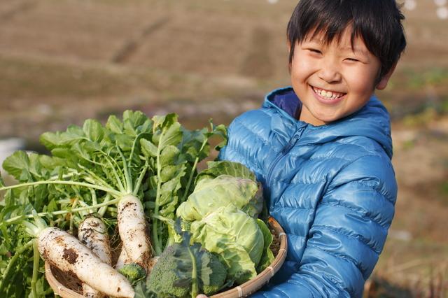 旬野菜嫌い克服のイメージ画像