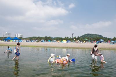 海の公園の潮干狩りの画像