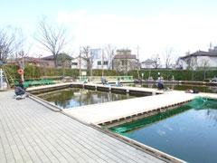 東京荒川区のあらかわ遊園の釣り堀の画像