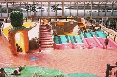 屋内プールで子どもも楽しめる東京サマーランドの画像
