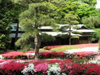つつじの花が見られる東京皇居東御苑のイメージ画像