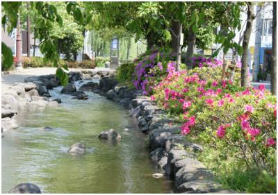 つつじの花が見られる一之江境川親水公園のイメージ画像