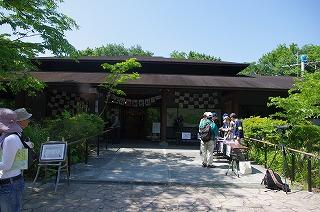 鎌倉エリア横浜自然観察の森を子連れでお散歩!の画像