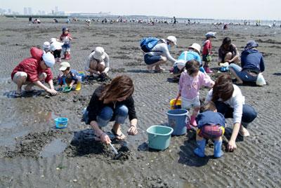 潮干狩り千葉県三番瀬海浜公園の画像