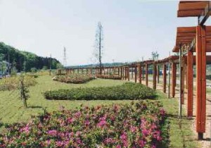 fujisawa city park