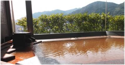 有馬温泉へ子連れで行ける有馬グランドホテルの家族風呂の画像