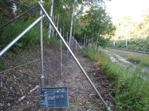 滝ノ下・滝ノ上間31k600m付近鹿止め柵新設2