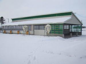 雪印種苗長沼肉牛牛舎新築